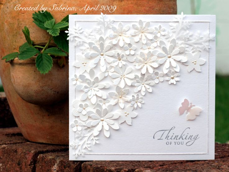 WT215 Simply White by Cook22 - Cards and Paper Crafts at Splitcoaststampers