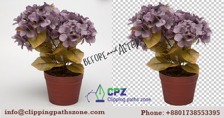 Most of the people wish to have image background removal services from the professional Clipping path service provider. You can choose us for getting the best clipping path service. It is because we are expert hands and highly skilled designers in the market to provide clipping path service. To more Information contact us:  +8801738553395.