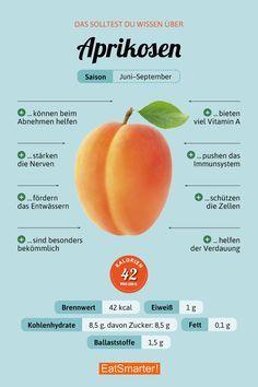 apricot  #gesunde ernährung #healthy food