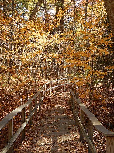 pgh trails 1. Rachel Carson Trail