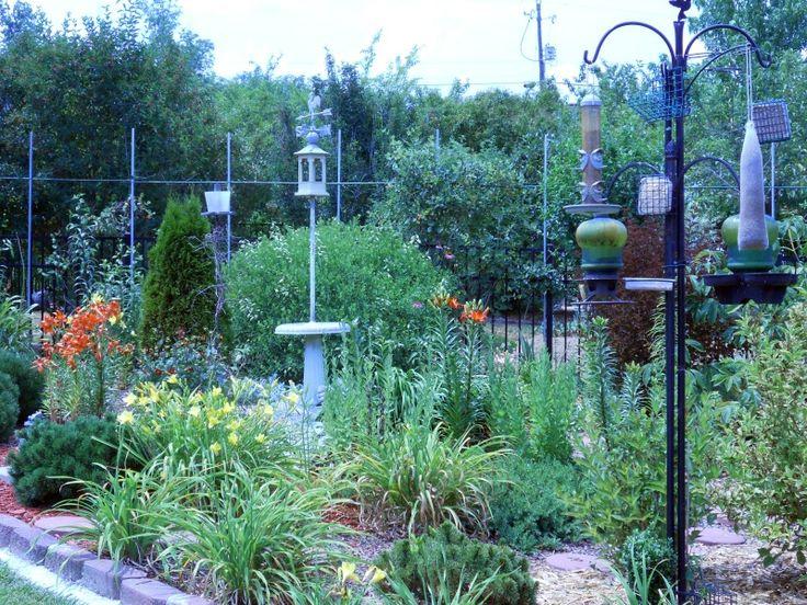 Photos Of Hummingbird Gardens | Hummingbird Garden   Kim Million