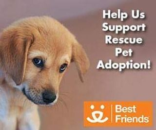 Proud to support Best Friends Animal Society Learn more about our efforts: http://www.chemdrycares.com #bnkchemdry #carpet #Carlsbad #oceanside #vista #carpetcleaning #bonsal #sanmarcos #danapoint #sanclemente #lacosta #lucadia #healtbyhome #green #ranchosantafe #ranchosantafelocals #sandiegoconnection #sdlocals #rsflocals - posted by BnK Chem-Dry  https://www.instagram.com/bnkchemdry. See more post on Rancho Santa Fe at http://ranchosantafelocals.com