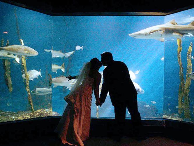 The Maritime Aquarium at Norwalk - Connecticut