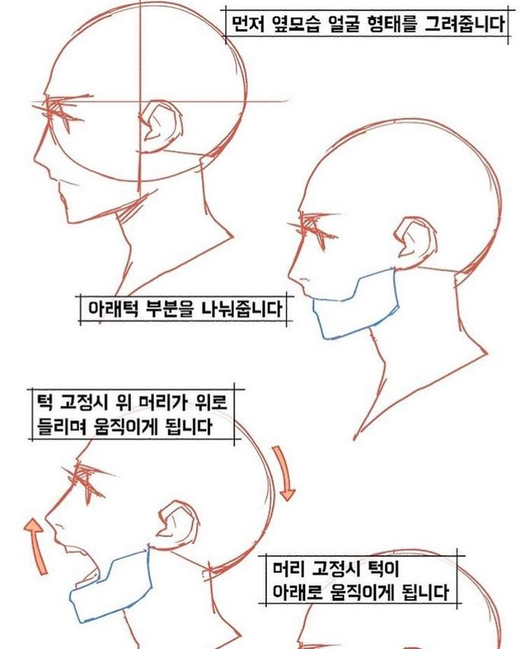 It is a picture of Nerdy Side View Drawing Reference