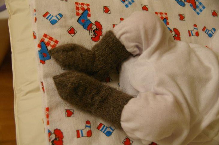 Остальное: носочки из козьего пуха (носки вязание спицы) ФОТО #1