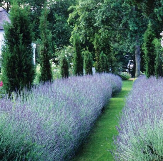 . <3 gardening