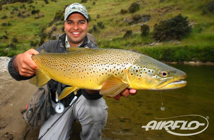 An incredible brown trout caught whilst fly fishing at the back country of New Zealand!