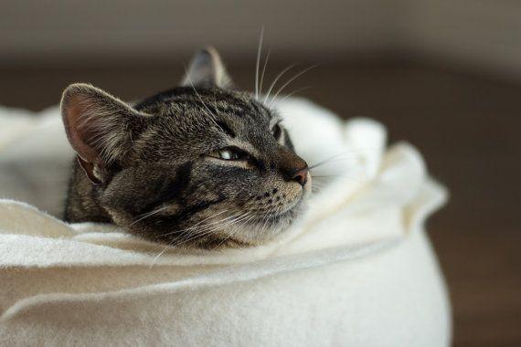 Cat bed/cat house/cat cave/white flower felted cat bed door elevele, $77.00