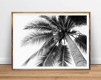 The 25 best Palm tree leaves ideas on Pinterest
