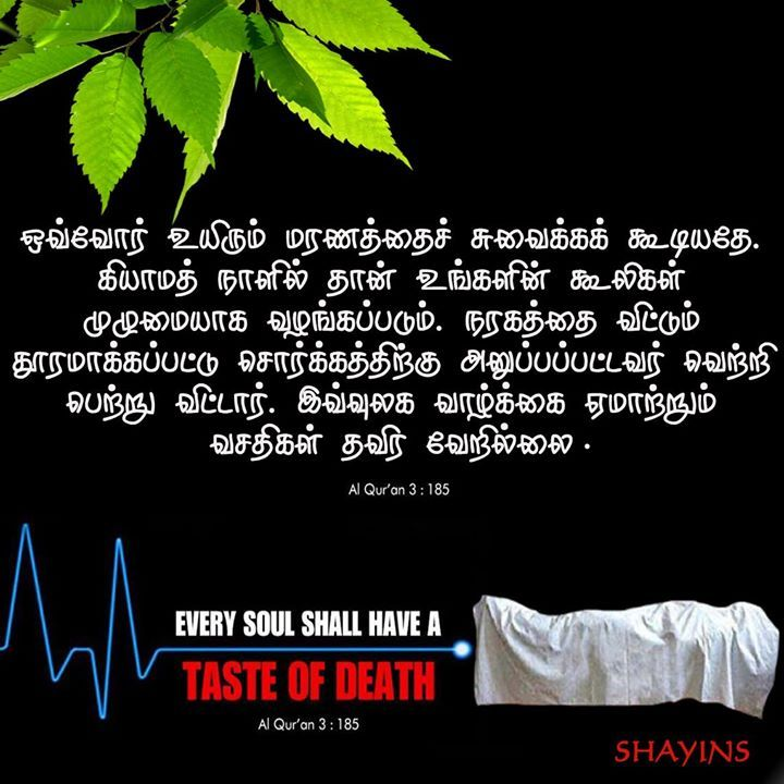 Tamil Muslim Imaan Quotes: 95 Best Islam ( Tamil) Images On Pinterest