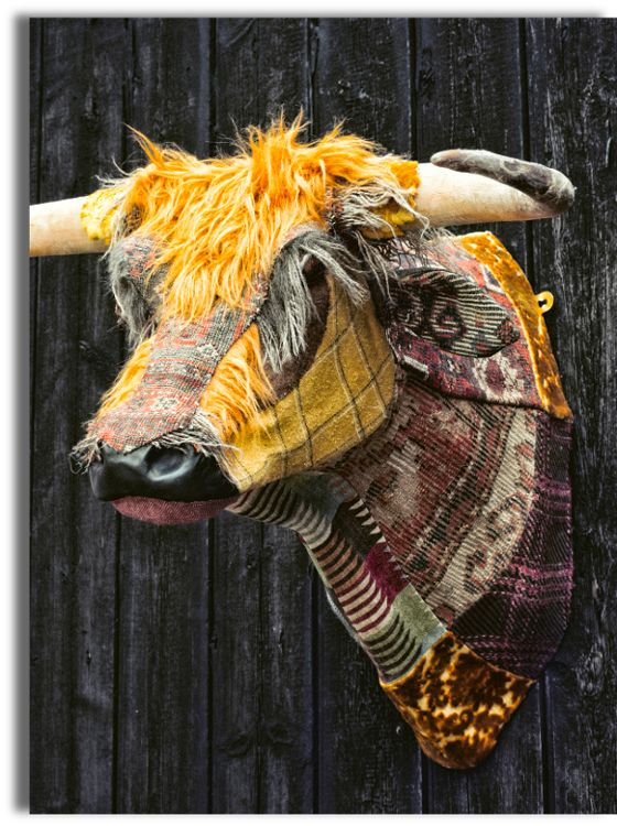 Dougal the Highland Bull by Carola van Dyke