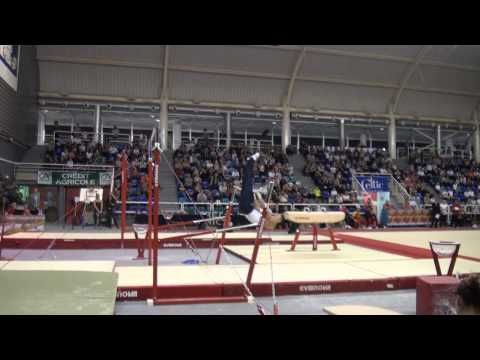 It's almost ridiculous how good Paul Ruggeri's swing is on bars:P. (▶ Paul RUGGERI 2013 barres asymetriques)