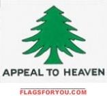 Washington Crusaders Flag