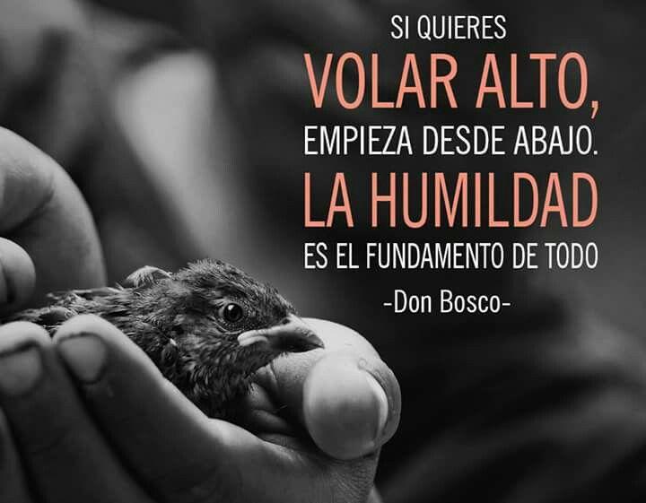 Don Bosco Frases De La Vida Pinterest