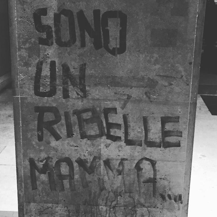 Hey babetake a walk on the wild side! #streetart #igerspisa #revolution #quotes #rebel #consiglidimakeup #bloggerlife #igdaily