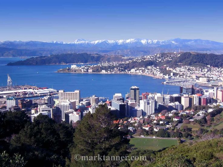 Wellington, New Zealand. My home away from home