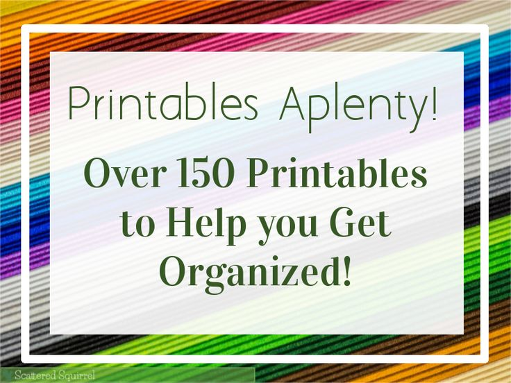 Over 150 Printables to help you get organized.