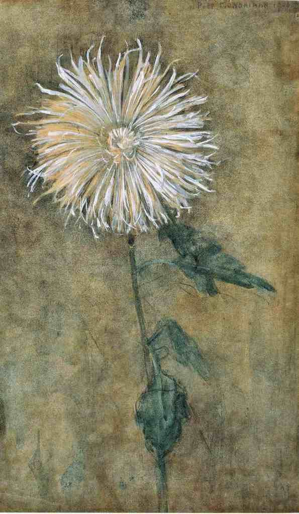 Piet Mondrian, Chrysanthemum.    This is so different from the strong geometric works that come to mind when I think of Mondrian. I love the beautiful softness of this painting. I enjoy seeing the evolution of an artist's style.