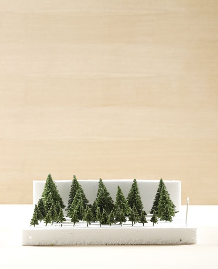 Miniature fur trees nested in a styrofoam holder