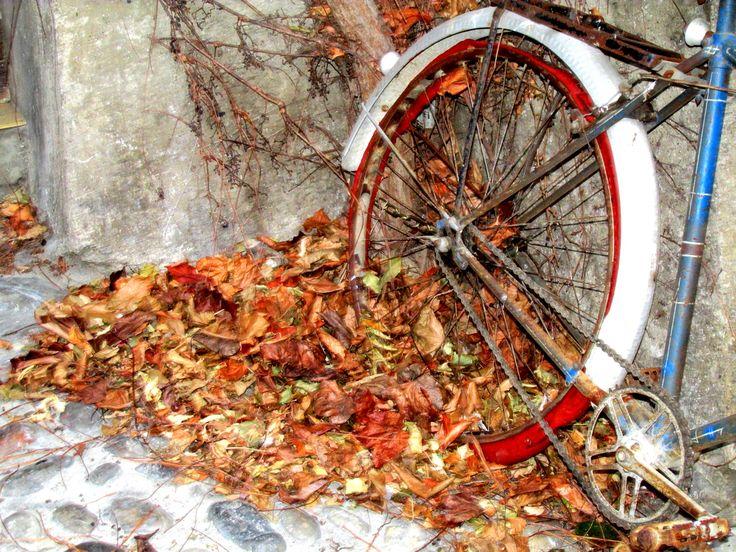 Outono Bicicleta Folhas