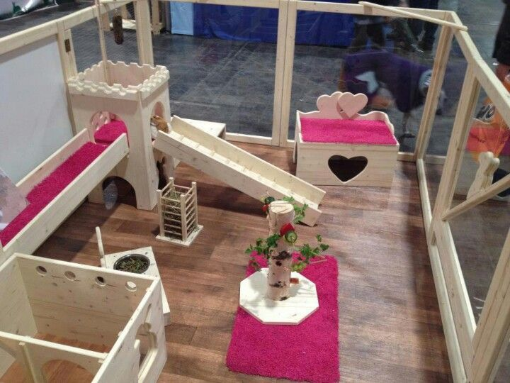 what a bunny's home should look like - Google Search