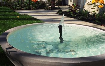 A shallow dish made a perfect water feature for a garden in Grey Lynn.