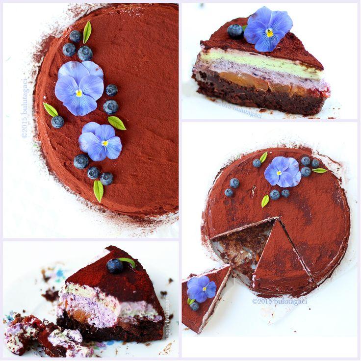 Yabanmersini şeftali çikolatalı antepfıstıklı unsuz kek pasta