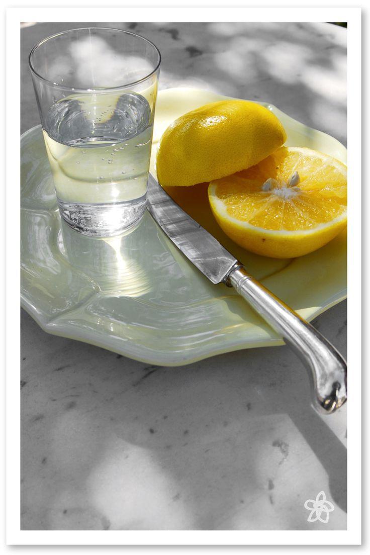 limonata fatta in casa - cucina da ManuAle - Jardin joli