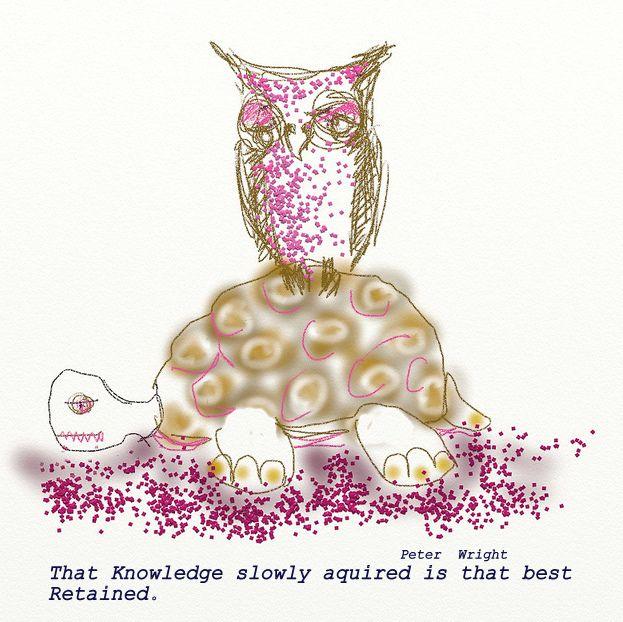 owl philosophy wizdome