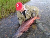 June Alaska king salmon fishing.