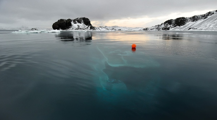 Quot Mar Sem Fim Quot Yacht Antarctica Off The Coast