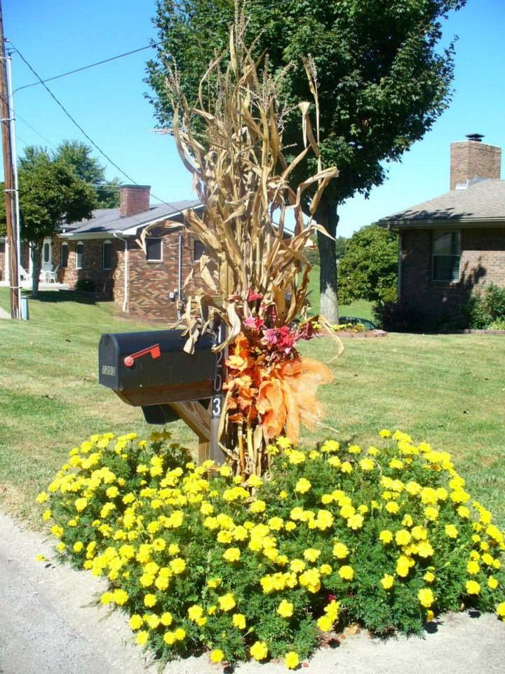 Fall Decorations. Hopefully no one will hit my mailbox with a baseball bat if I do this!