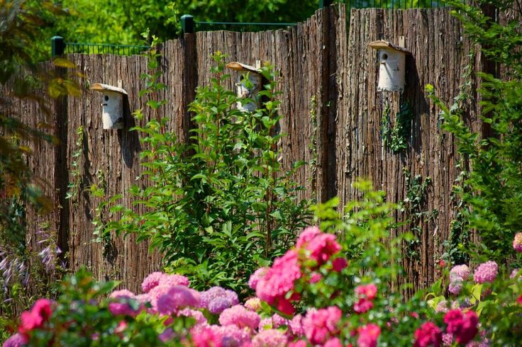 #Nisthilfen für unsere gefiederten Freunde. #Vögel erfreuen uns nicht nur mit ihrem Gesang. Sie fressen auch unzählige Schädlinge wie Blattläuse, damit die #Rosen auch weiterhin kraftvoll wachsen und blühen