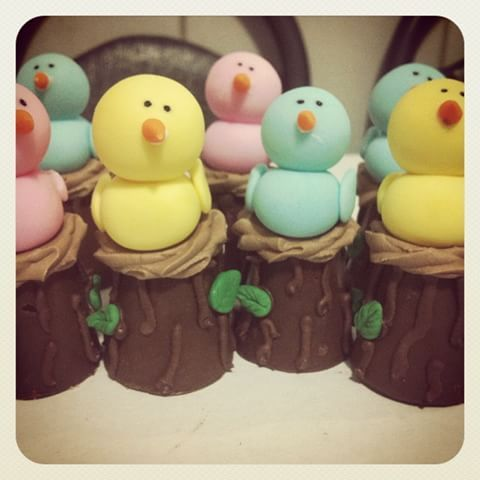 Tronquinhos de chocolate com doce de leite festa Branca de Neve #chocolate #brancadeneve #passarinho #doce #docedeleite #festa #comemorar