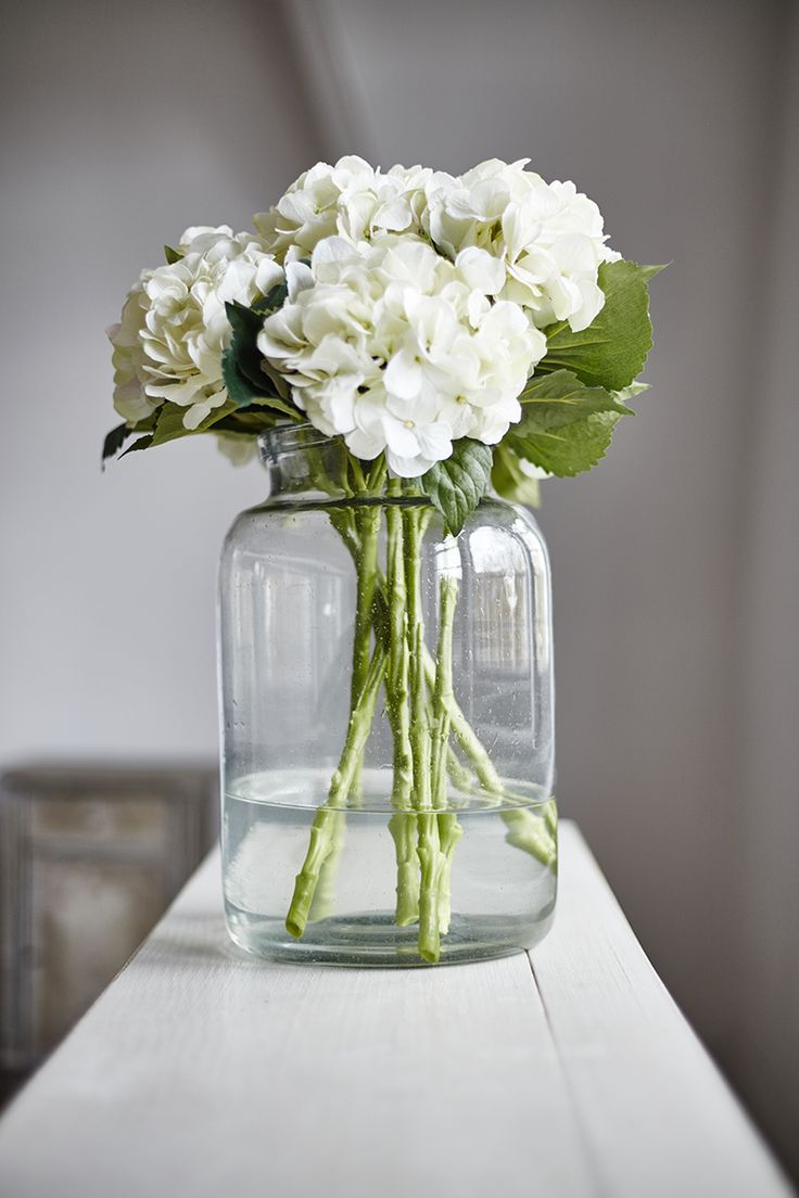 Large Glass Jars - Perfect for displaying beautiful hydrangeas, available at Just So