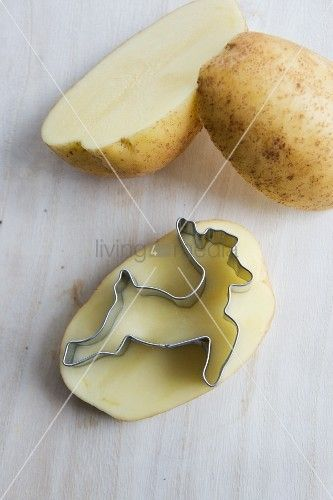 © living4media fabriquer un tampon de pomme de terre avec emporte pièce