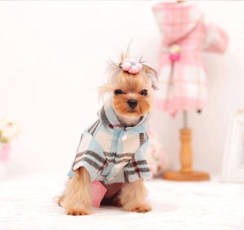 Mascota Perro Gato Cachorro Invierno Lana cálida con Capucha Abrigo Chaqueta Ropa de Disfraz Apparel
