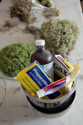 How to preserve moss. | The Art of Doing Stuff