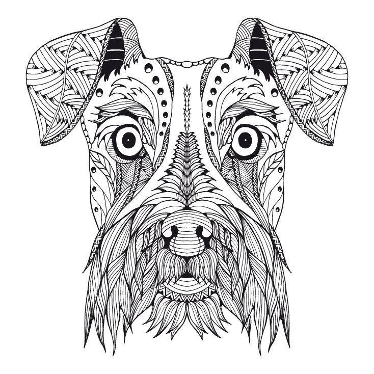 Znalezione Obrazy Dla Zapytania Koala Art Mandala Ilusion