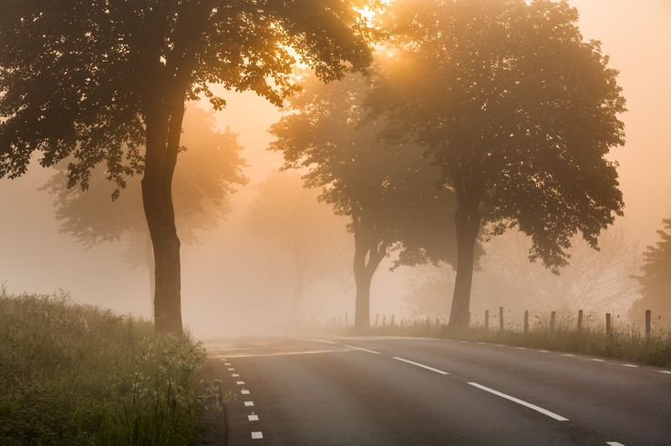 Morning fog in Svarte, Skåne. © Anders Tuckler