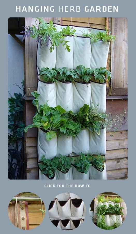 Get a plastic hanging shoe rack + potting soil + herbs = wonderful garden decor