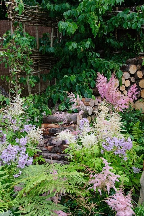 Firewood cut logs with Astilbe and flowering spring plants, ferns, dogwood tree,