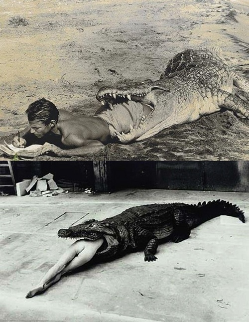 Peter Beard's self-portrait (top image) and Helmut Newton's 'Crocodile Eating Ballerina' below...