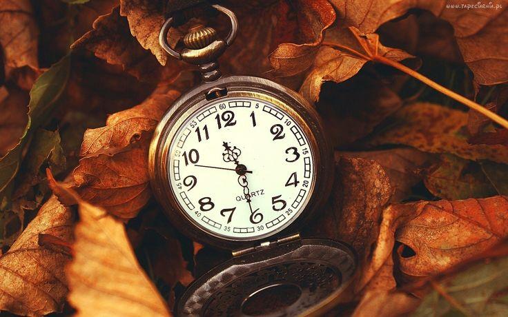Zegarek, Liście