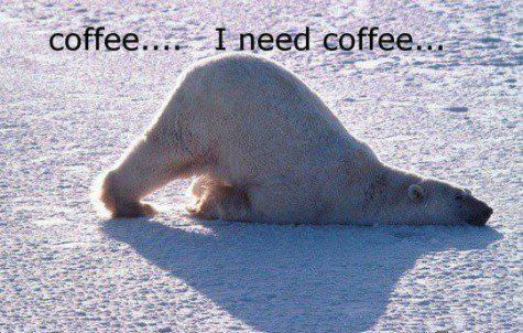 Mornings without coffee are too hard to bear!