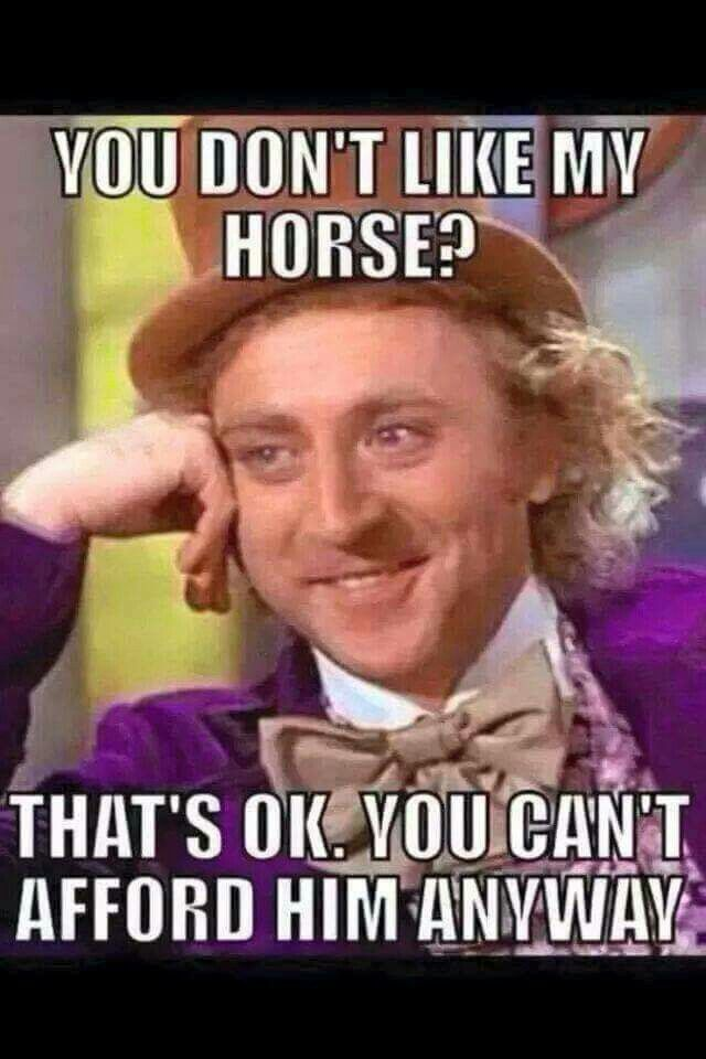 I want a horse in the worst way possible just can't afford it. what can I do?