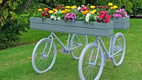 Garden planters don't have to be boring. Rather than consign your old bikes to landfill, recycle them into snazzy garden art! If you don't have a matching pair of bikes, you can pick them up from recycling centres for next to nix. Then all you need is a calm day and repurposed timber or treated pine decking for your box planters. Priceless!