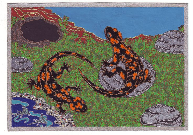 """Salamanders, 2005.""""The salamander represents those who pass through the fires of passion and of this world without stain.Is also used to symbolize the flames, which it passes through, and so is a symbol of fire, temptation, and burning desire."""" http://monsters.monstrous.com/salamander.htm"""