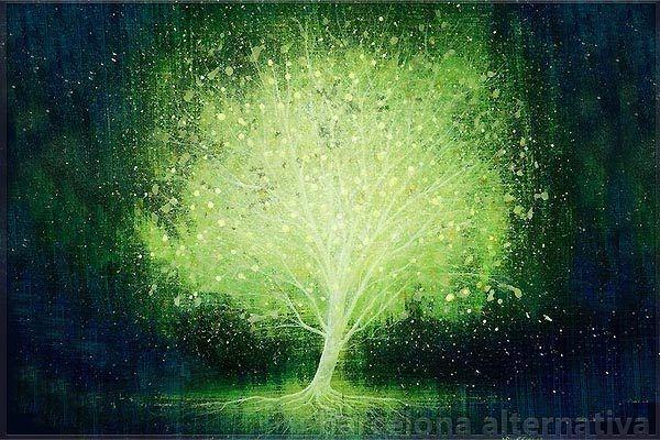 Como limpiar el Árbol Genealógico para la Prosperidad