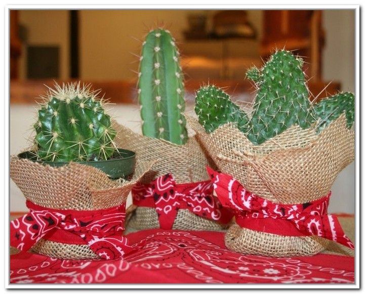 Cowboy Party Centerpieces Ideas - Home Accent & Decor : Best Craft ...